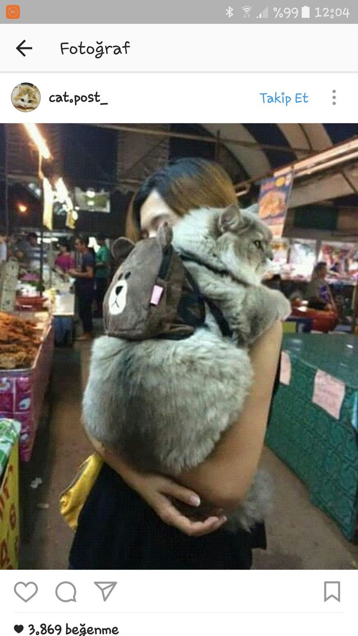 I actually hv the same cat backpack. My cat hate it so much to wear it to bring her own snacks.. lol