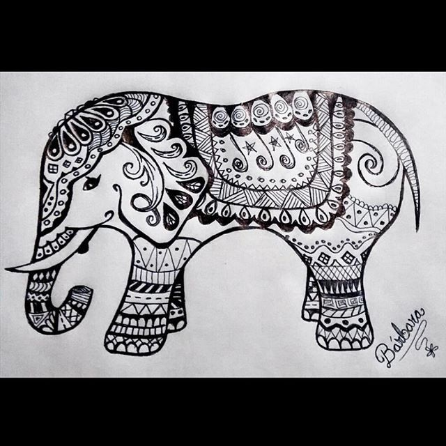 elephant mandala zentangle art drawing elefante dibujo