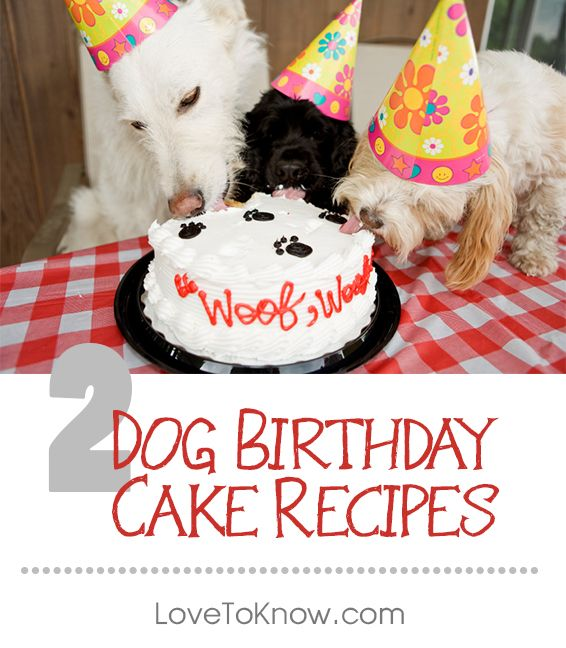 Want To Whip Up A Birthday Cake For Your Dog's Next
