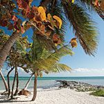 Charming Mom-and-Pop Restaurants in the Florida Keys - Southern Living