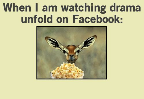 GIF: Facebook drama - www.gifs-gif.com ▬▬►  IMPORTANT: ALWAYS CLICK ON THE IMAGE to view the original post. Most of the posts have more than one image (Pinterest supports only one image per post so you wont be able to view the full post). Click here to view the full post: http://gifs-gif.com/funny/