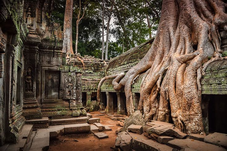 Ankgor, Cambodia. nature-reclaiming-abandoned-places-5