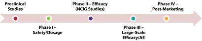 Phase I: clinical pharmacologic studies that look at toxicity and pharmacologic effects. Phase II: clinical investigations of patients for efficacy and relative safety. Phase III: large-scale randomized controlled trials for effectiveness and relative safety, which are often multi-centrered. After a drug passes Phase III testing, it can be licensed for marketing. Phase IV (post-marketing surveillance): monitors new agents as they come into general use by the public.