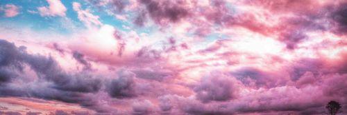 pink twitter header | Tumblr