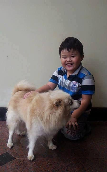 Foto kiriman Tabitha Ratnawati II  Bravo adalah anjing kesayangan keluarga kami. Tiap pagi dan sore kami mengajaknya berjalan-jalan di sekitar rumah. Geovan sayang sekali pada Bravo. Bravo anjing yang setia dan pemberani #AnimalLoversEMCO