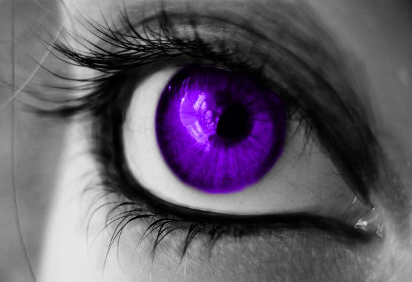 I found 'Bright Purple Contact Lenses!' on Wish, check it ...