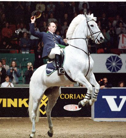 Next Milton! I loved him so much when I was a kid! Such a show-off, an absolute performer. I always thought it was such a shame he was a gelding, as I would have loved to see what he would have produced.