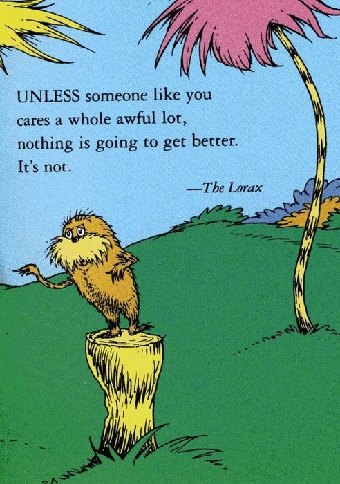 The Lorax wisdom