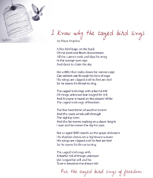 bird caged essay i know sings why
