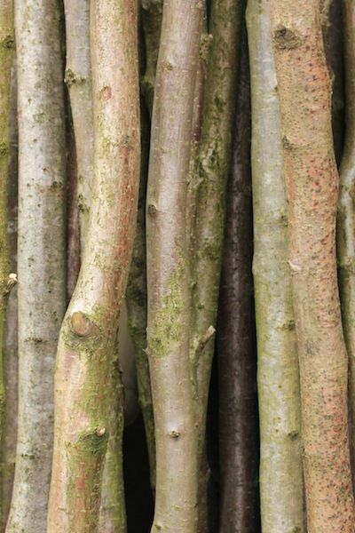 647 Best Wood Greenwood Images On Pinterest Green