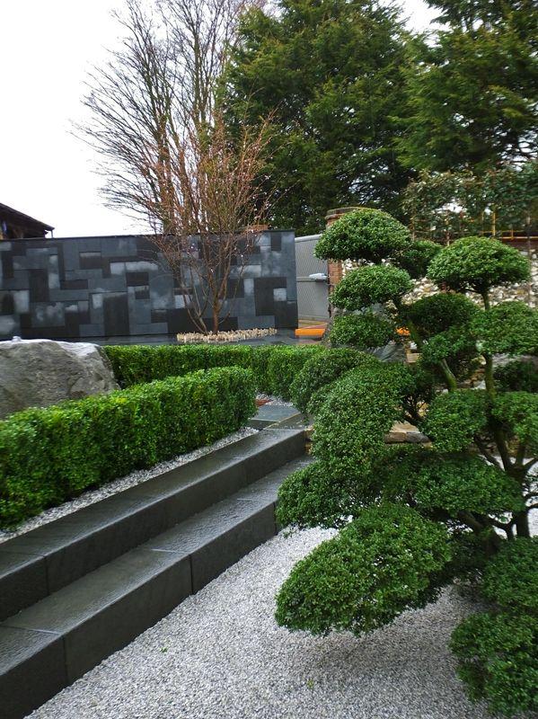1000 id es sur le th me bonsai erable sur pinterest for Jardin zen acheter