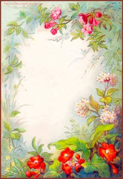 1880s floral frame    background