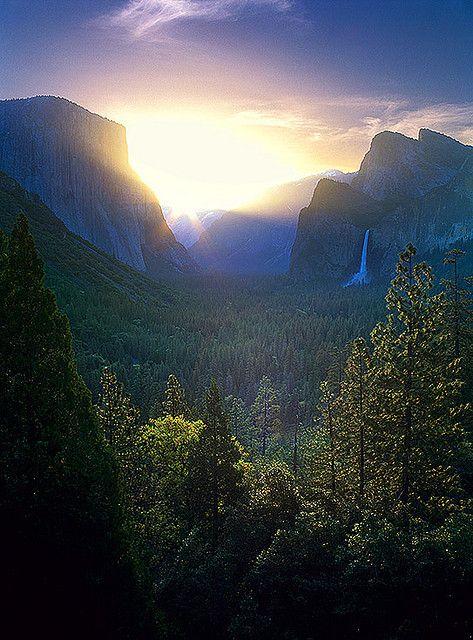 Yosemite National Park , Cal.