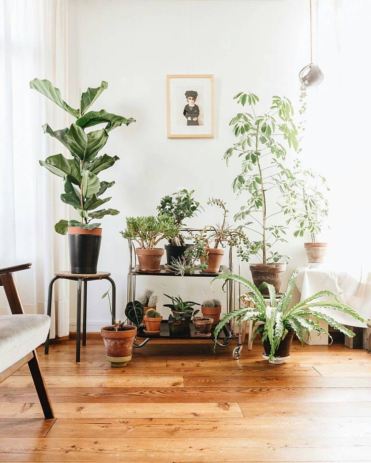 """10.9k Likes, 52 Comments - Urban Jungle Bloggers™ (@urbanjungleblog) on Instagram: """"A bright start of the week and the first day of Spring! ✨ Also, the new Spring styling topic is…"""""""