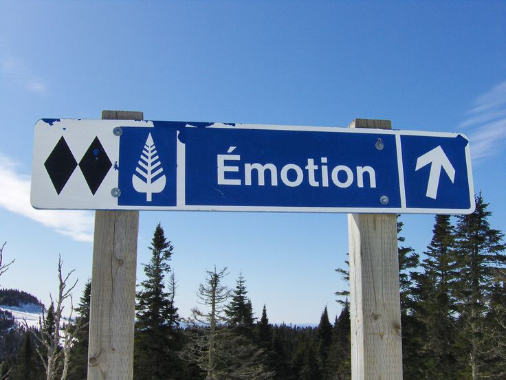 What is the purpose of emotion?