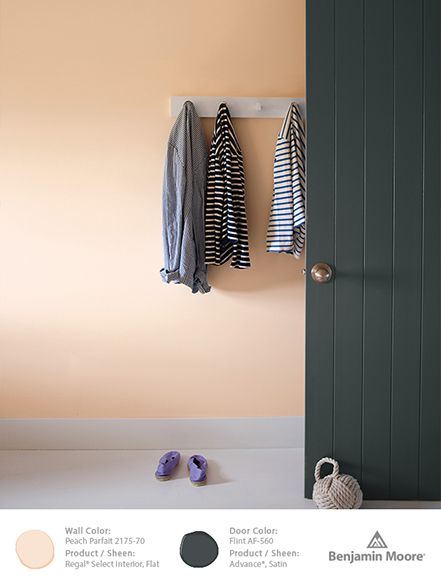 Color Trends 2014/Benjamin Moore - (The Door, not the walls, Flint AF-560)