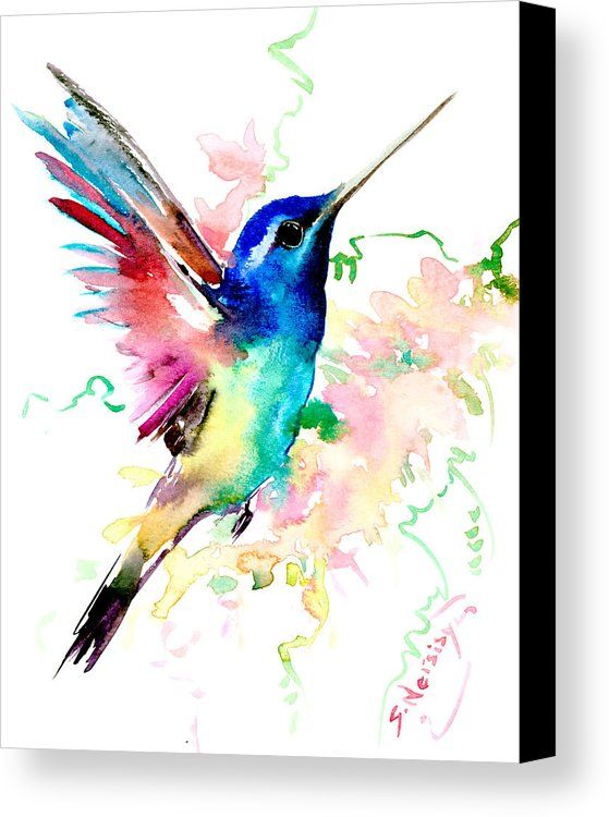 Flying Hummingbird Canvas Print