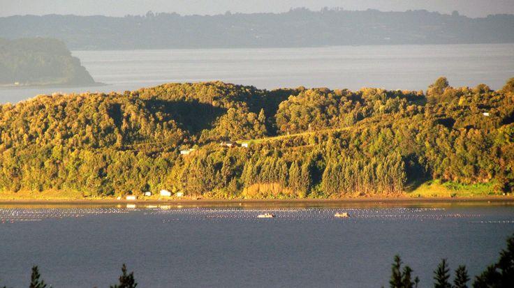 Isla Lemuy desde Terao