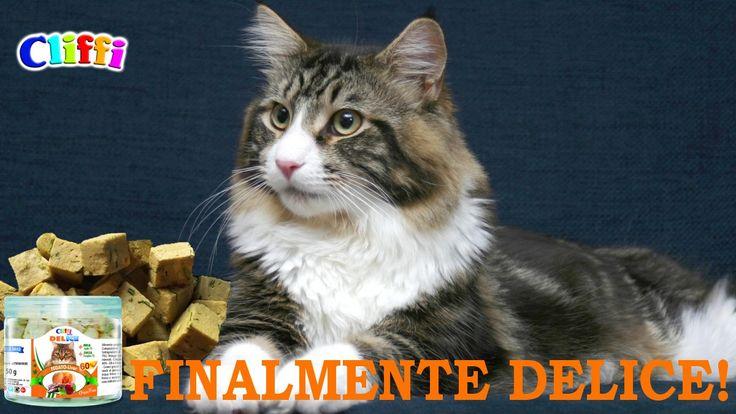 #DELICE #Snack liofilizzati per cani e gatti - Freeze dried snack for cats and #dogs