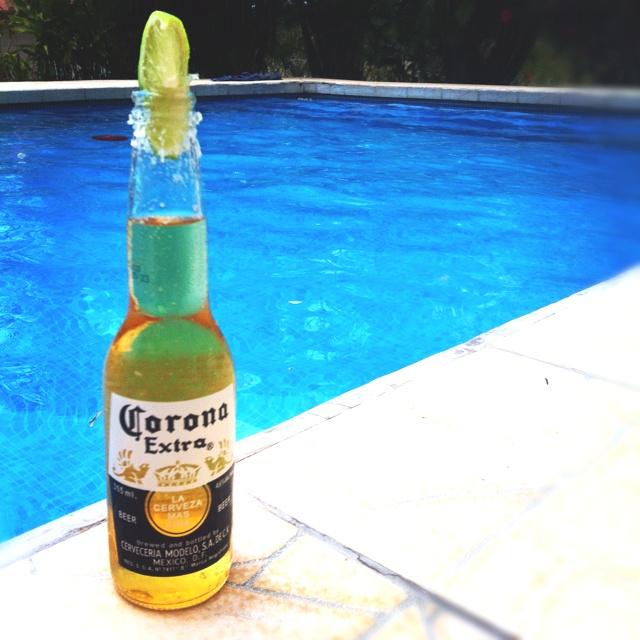 Chang'e 3, Beer and Corona on Pinterest