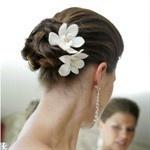 hairstyle: Hair Ideas, White Flowers, Hair Flowers, Bridesmaid Hair, Wedding Updo, Dendrobium Orchids, Bridal Hair, Wedding Hair Style, Wedding Hairstyles