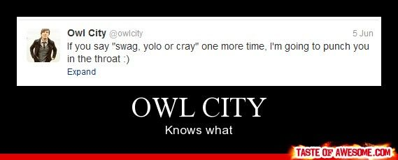owl city funny pictures - Google Search