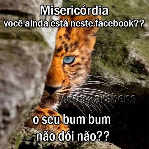 Misericórdia, você ainda está neste facebook? O seu bumbum não dói não?