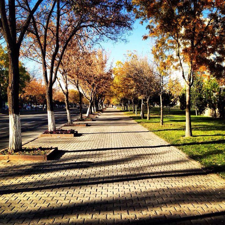 Kayseri Airport Street