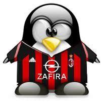pinguino rossonero
