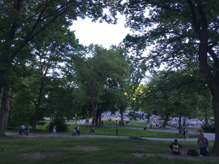 Central Park. N.Y