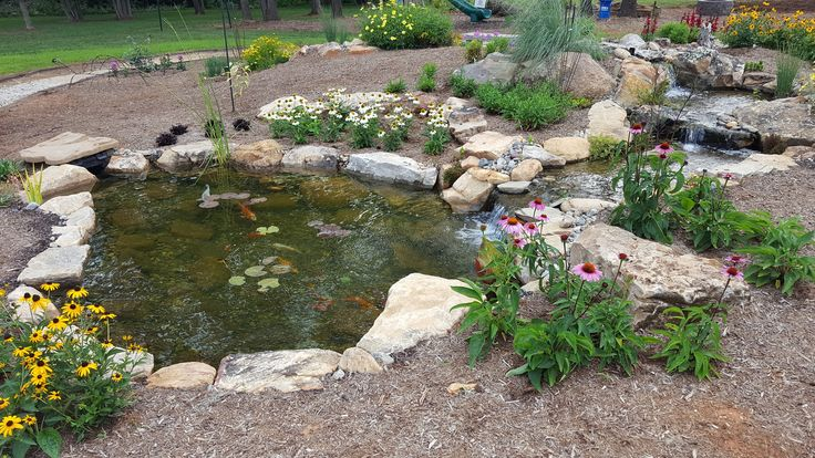 15 best water garden wonderland images on pinterest for Fish pond supplies near me