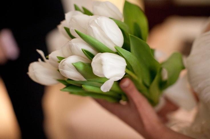 El ramo de Eva, de tulipanes blancos. Sencillo y elegante