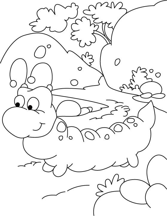 Epic Very Hungry Caterpillar Coloring Pages