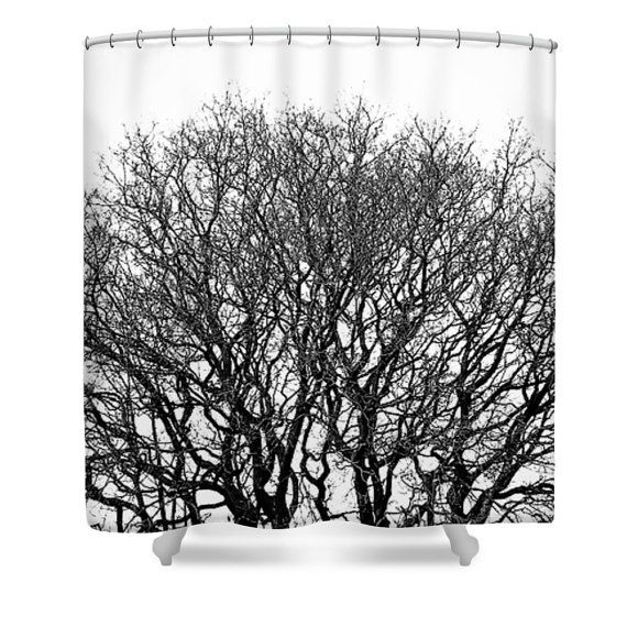 Black and white shower curtain, black and white bathroom decor, tree shower curtain, minimalist bathroom, nature decor, photo shower curtain by SophieMakesFabrics on Etsy