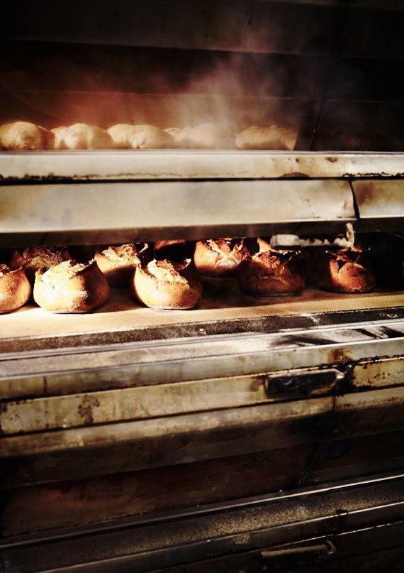 Bread Baking via Mowie Kay