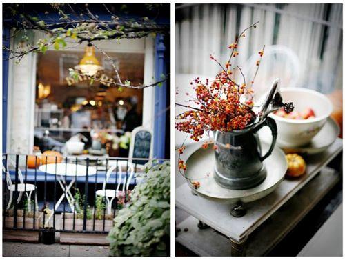 Plush Palate: Café Inspiration