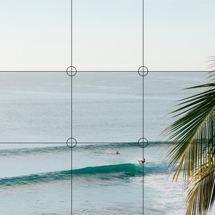 Photo Composition Essentials: The Rule of Thirds | Artifact Uprising