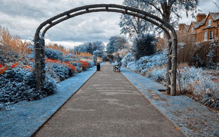 Amazing park