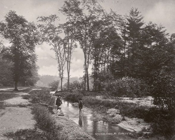 toronto 1900s  Kids playing in a bucolic Rosedale Ravine.