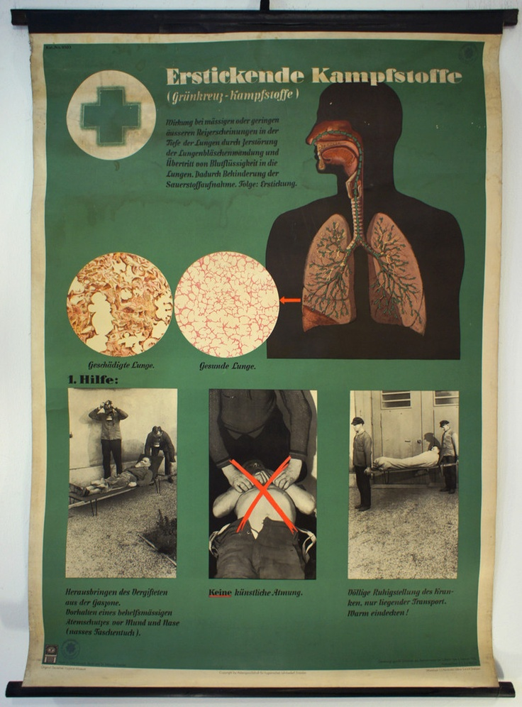 Medizin / Medical Charts - Irenaeus Kraus - 20th Century Ephemera