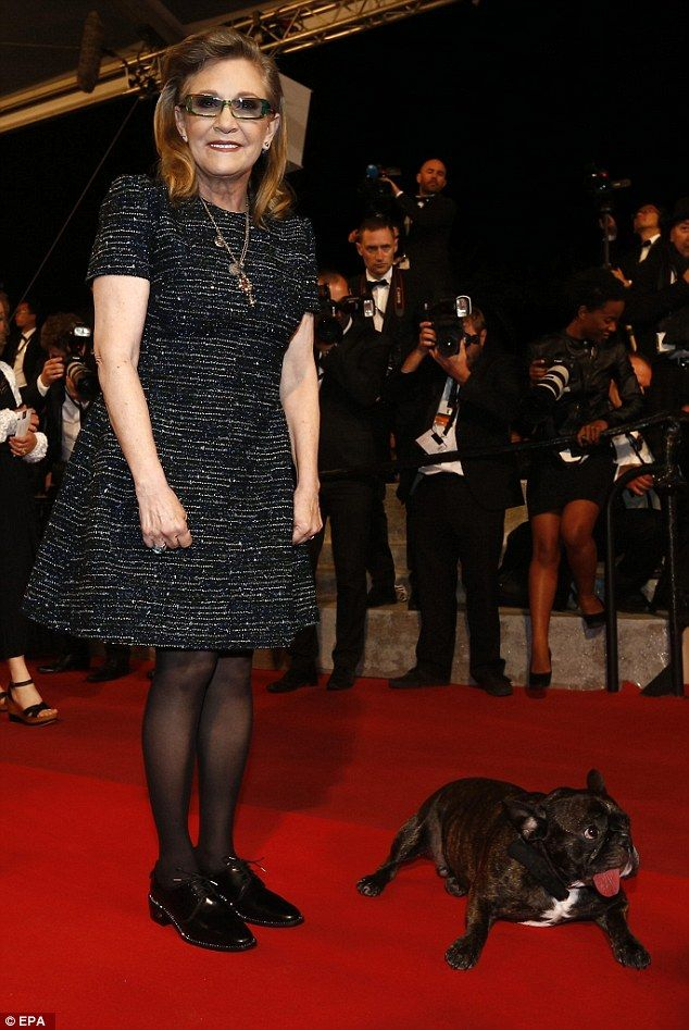 In good company: Carrie Fisher was indulging in famous paws when she stepped out at the Ca...
