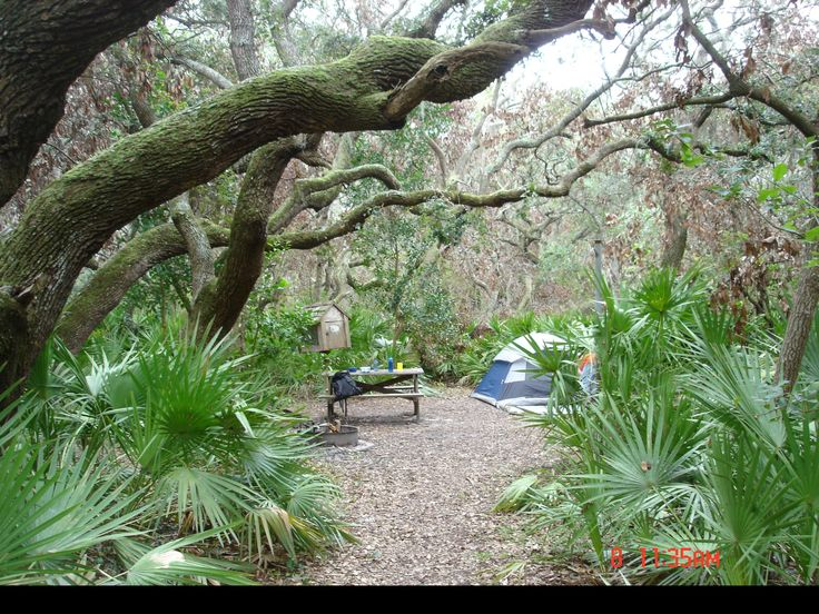 Sea Camp Campground – Cumberland Island, Georgia | SouthernHiker