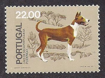 Dog Art Full Body Postage Stamp Portuguese PODENGO Native Portugal Dogs 1981 MNH Portuguese Podengo, Dogs 1981, Portugal Portuguese Timorous, ...