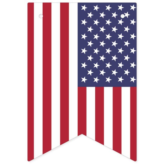 American United States Usa Flag Bunting Banner Zazzle Com In 2020 Bunting Banner Usa Flag Flag