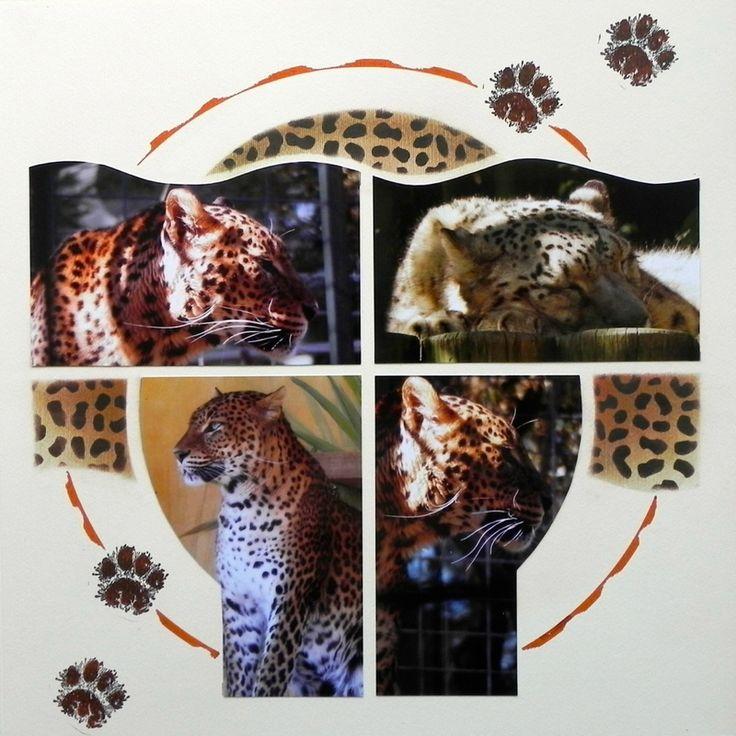 Leopard-Infini