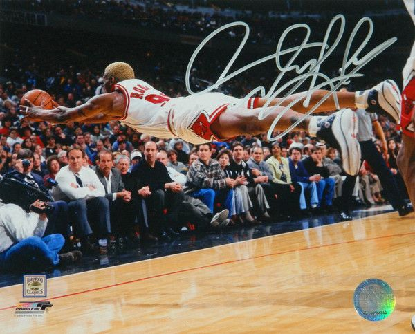 Dennis Rodman Signed Chicago Bulls Diving Action 8x10 Photo