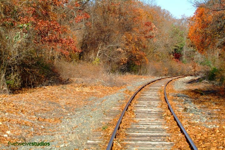Tracks in the Fall - www.facebook.com/512studios