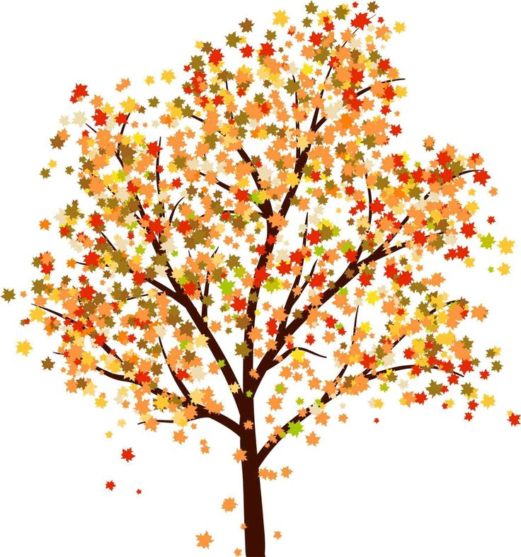 Autumn Tree Leaf Fall Animated Wallpaper Fall Trees Drawing Tumblr Oak Tree Drawings