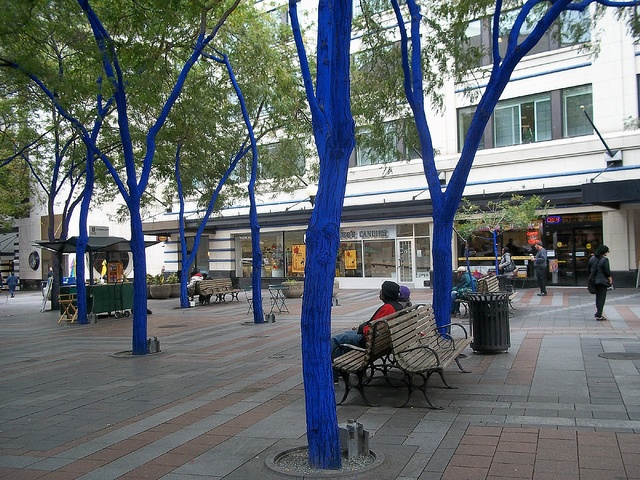 100_8328.jpg by ERNESTHINTON, via Flickr Blue tree