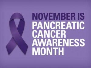 November is Pancreatic Cancer Awareness Month as well as the month Spinnati got her wings.